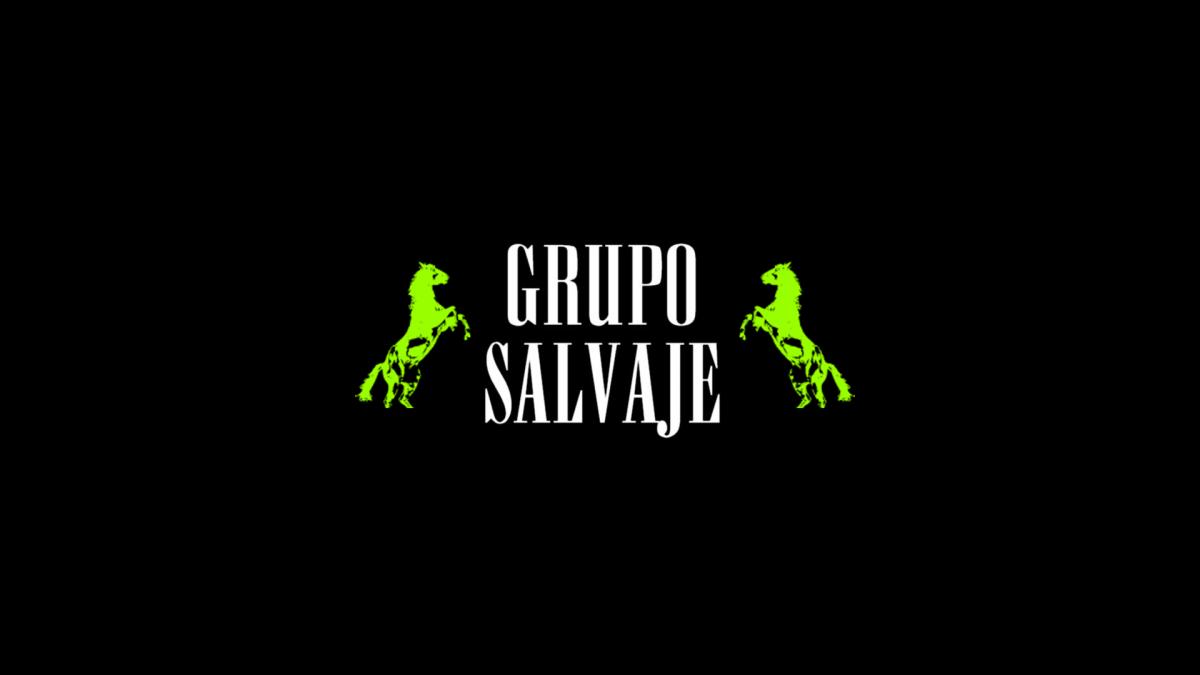 Grupo Salvaje, web hecha por murciègalo en 2013