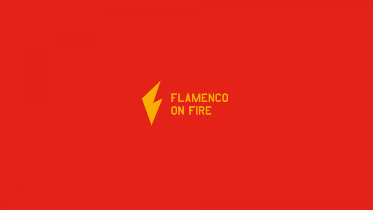 Flamenco on Fire, web hecha por murciègalo en 2014