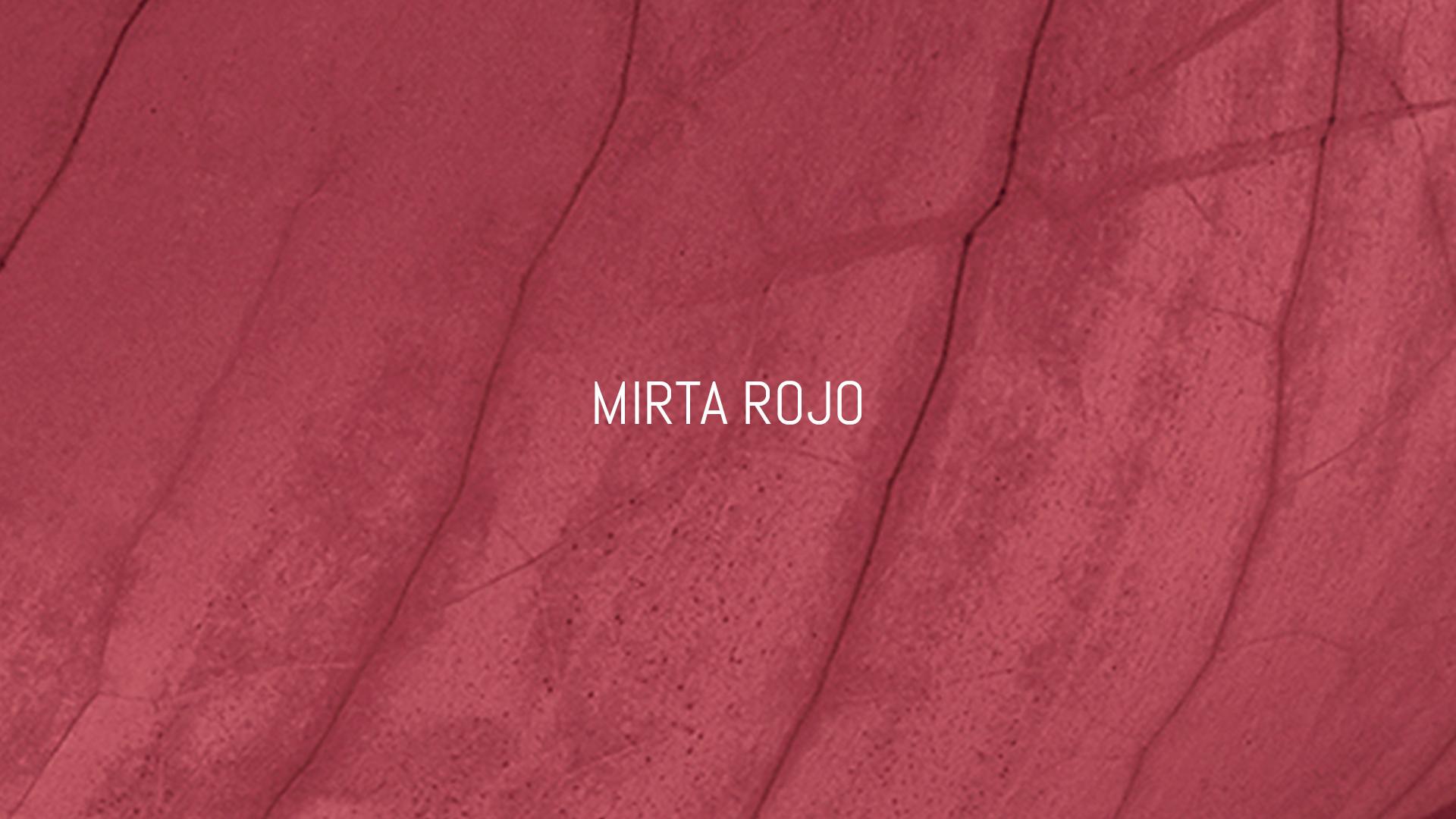 Mirta Rojo, web hecha por murciegalo en 2019